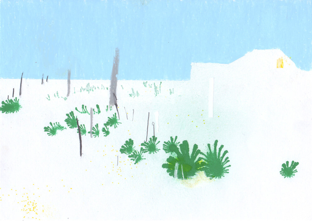 Dungeness-Fiona-Woodcock