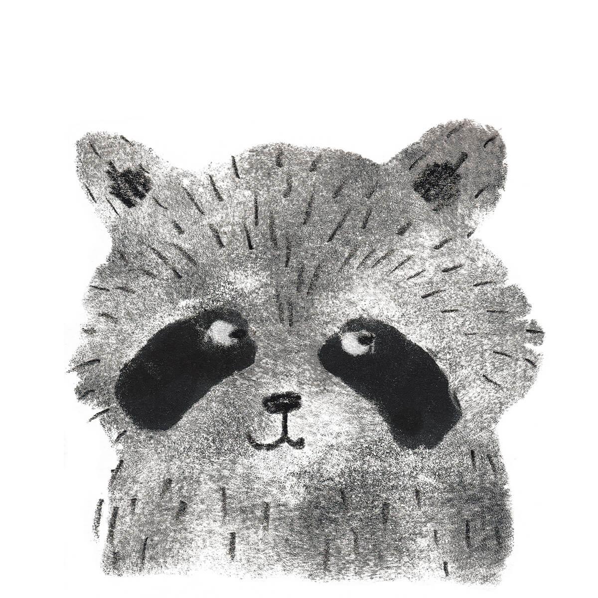 Raccoon_high_res